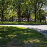 hersteld natuur en grasvelden voor bijeenkomst